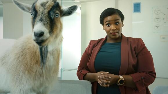 Aspirant: The Obvious Choice (Goat)